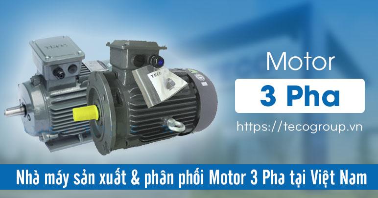 Motor 3 Pha - Bảng Giá Mô Tơ Điện 3 Pha Cập Nhật 2021