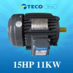 Motor Teco 15Hp 11Kw giá Tốt Nhất [ Chiết khấu CAO ]