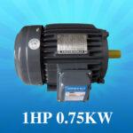 Motor Teco 1HP – 0.75Kw giá Tốt Nhất [ Chiết khấu CAO ]