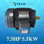 Motor Teco 7.5HP – 5.5Kw giá Tốt Nhất [ Chiết khấu CAO ]