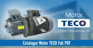 Catalogue Motor TECO PDF Full Cập Nhật Mới Nhất 2021