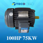 Motor Teco 100Hp 75Kw giá Tốt Nhất [ Chiết khấu CAO ]