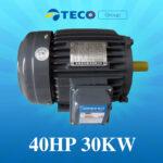 Motor Teco 40Hp 30Kw giá Tốt Nhất [ Chiết khấu CAO ]