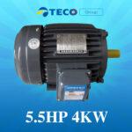 Motor Teco 5.5Hp 4Kw giá Tốt Nhất [ Chiết khấu CAO ]